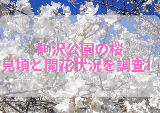 駒沢公園タイトル