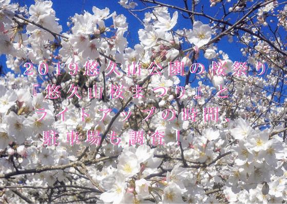 2019悠久山公園の桜祭り『悠久山桜まつり』とライトアップの時間、駐車場も調査!